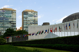 Country Flags in front of UN building